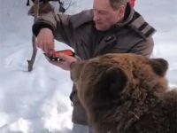 초밥나눠먹는 곰