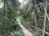 방콕 안의 섬 - 방끄라짜오